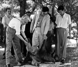 Reig, Gavrilov y el geólogo Celestino Danieli en los jardines del Instituto Lillo (1958)