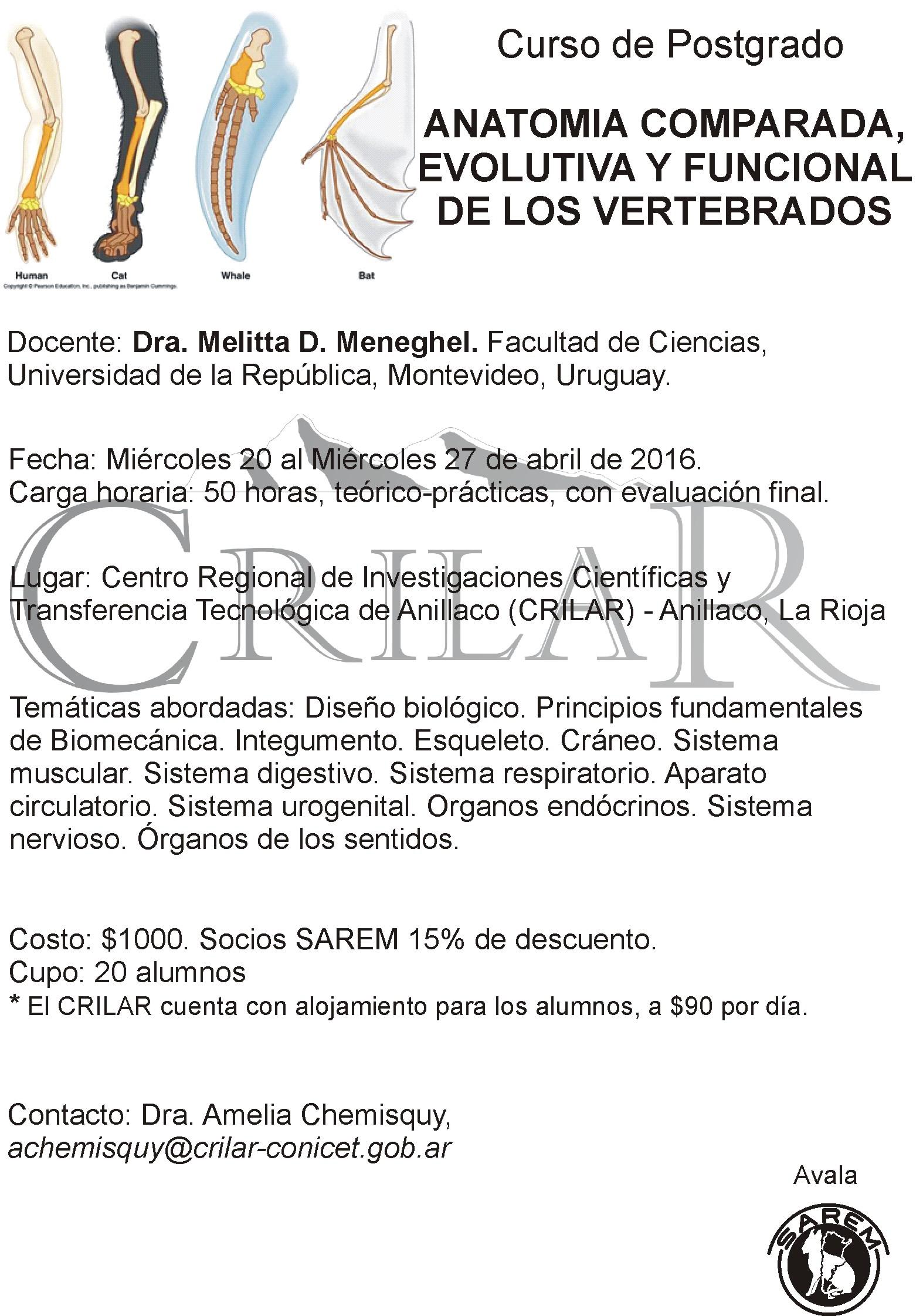 Dorable Anatomía Comparativa De Los Vertebrados Del Sistema ...