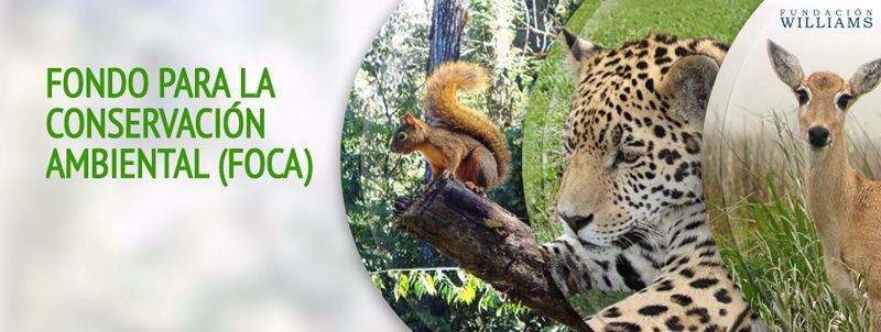 Fondo para la ConservaciónAmbiental (FOCA), 8va edición
